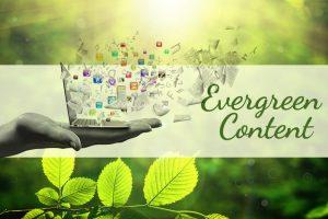 چرا باید محتوای همیشه سبز یا Evergreen Content تولید کنیم؟