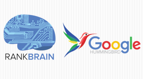 الگوریتم مرغ مگس خوار و Rank Brain